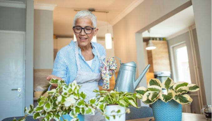 5 provas de que ter plantas em casa melhora a sua saúde