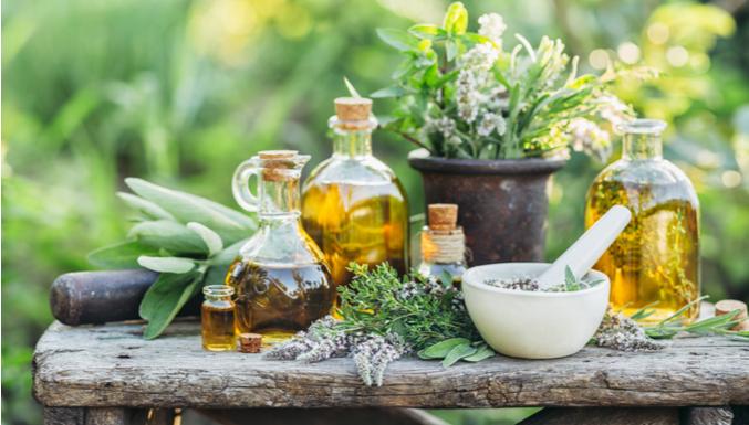 10 remédios naturais que você precisa conhecer agora